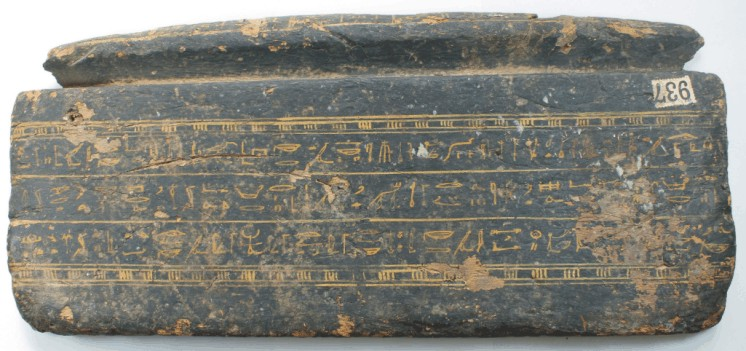 Image for: Fragment of a wooden coffin